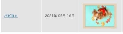 スクリーンショット 2020-06-17 17.57.49re.jpg
